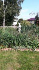 PKA ELSA mit Mischbepflanzung